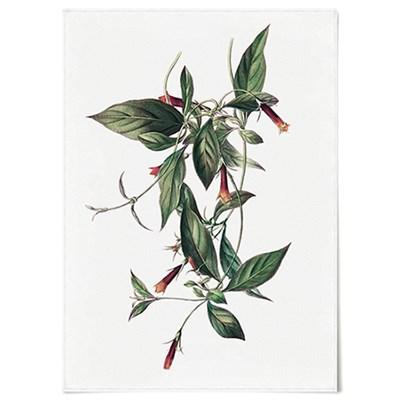 패브릭 포스터 F039 식물 꽃 보타니컬 아트 플라워F