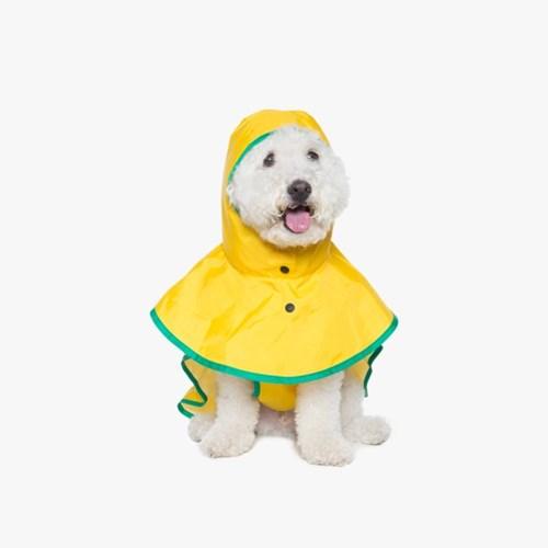 Raincoat Poncho 레인코트 판초 (Pineapple)