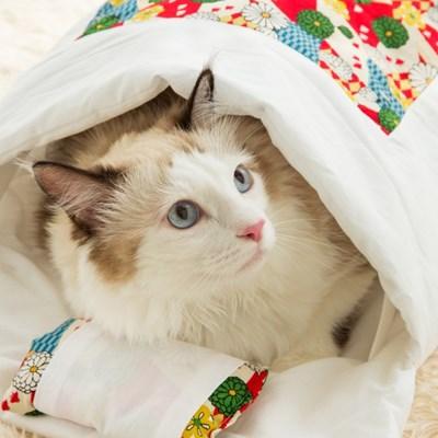 [FELISSIMO] 고양이 이불 (6 options)