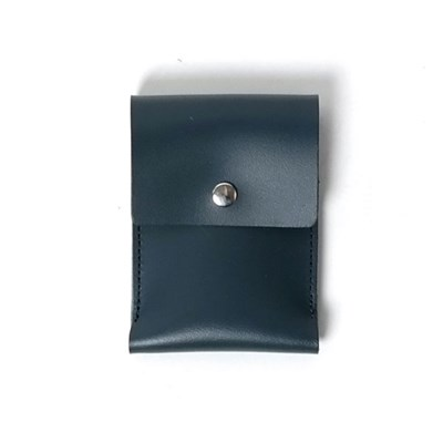 102 Card Case Blue