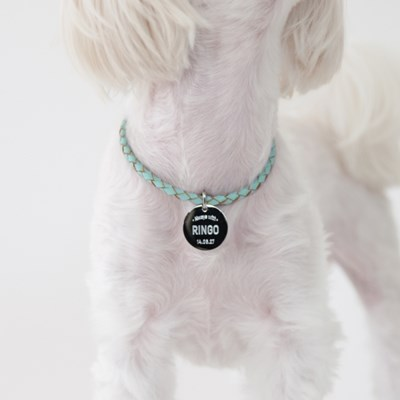 [ALWAYS WITH] 변색없는 강아지 인식표(가죽 목걸이)