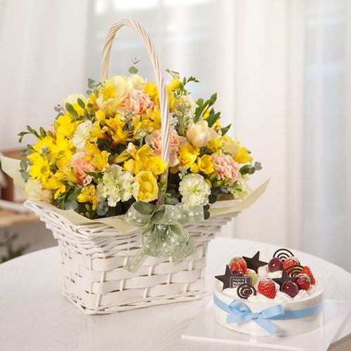 FN1717 귀여운너(꽃다발)+케익