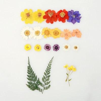 [압화 꽃모음 - A타입] 미니청실홍실 꽃모음