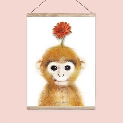 플라워포켓 원숭이