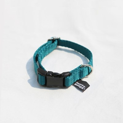 BLUE GREEN_COLLAR