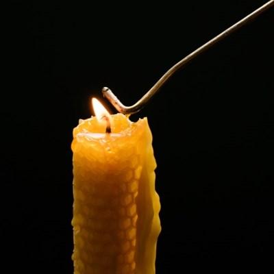 [프리다밀랍초]37g 비즈시트 밀랍초(3개)