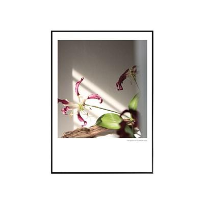 에포크 - 꽃시리즈 No.3 50x70