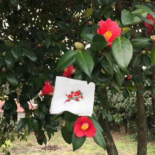 [Organic cotton] 동백꽃