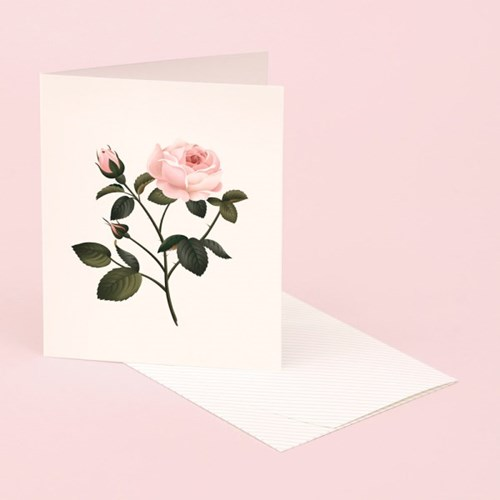 BOTANICAL SCENTED CARD – ROSE