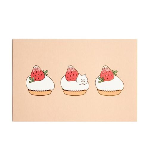 식빵뚱냥 딸기 타르트 엽서