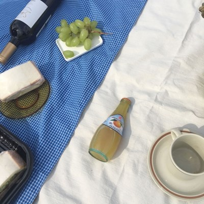 블루 체크 피크닉 매트( Blue check picnic mat)