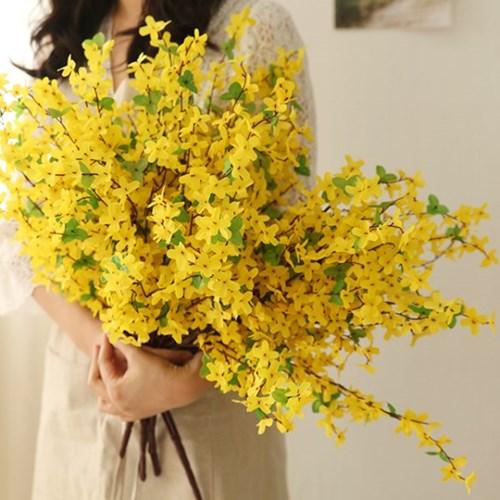 봄이와요 개나리 다발_(641771)
