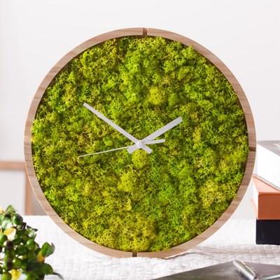 [숲앤숨] 스칸디아모스 원형 벽시계(30cm)-스프린그린