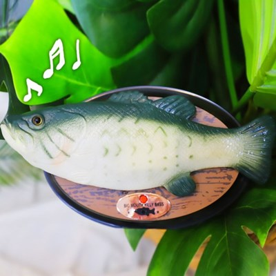 노래하는 물고기 (부바피쉬)_(301676374)