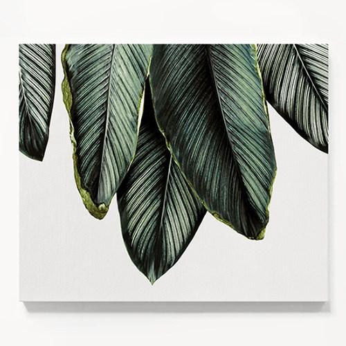 캔버스 식물 풍경 그림 천 액자 나뭇잎 패밀리