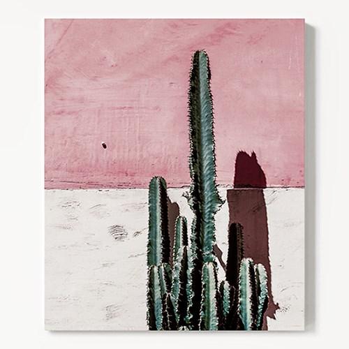 캔버스 식물 선인장 그림 액자 Cactus and pink