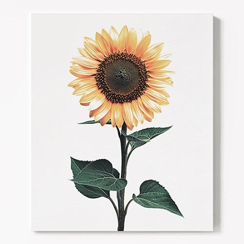캔버스 식물 인테리어 꽃 그림 액자 해바라기 no.2