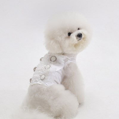 에덴숑-Vivid button blouse-White(비비드 버튼 블라우스)
