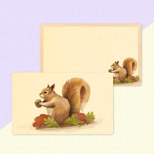 디원 다람쥐 메모(JM08)