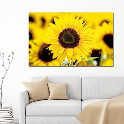 돈들어오는그림 해바라기 캔버스액자 노란꽃