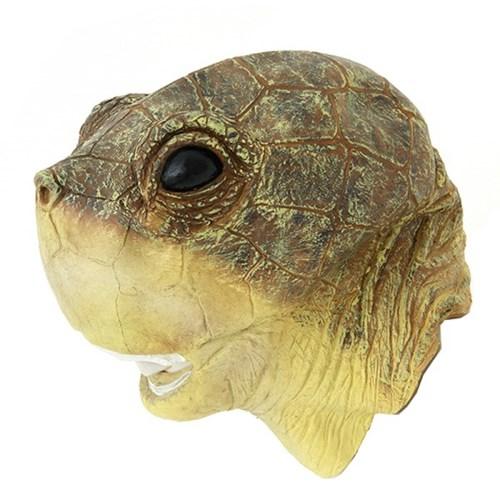 거북이가면