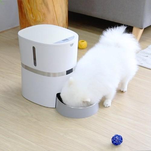 펫크미 프리미엄 급식기 강아지 고양이 반려동물 자동급식기