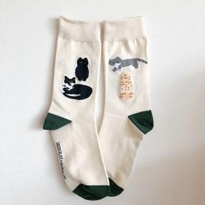 [Organic cotton] 두부캣