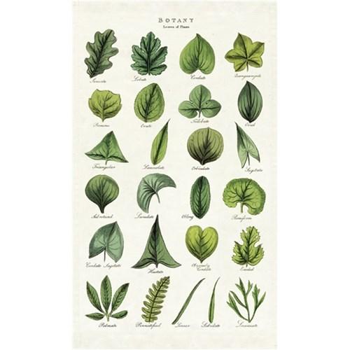 카발리니 패브릭 포스터 - Botany Leaves