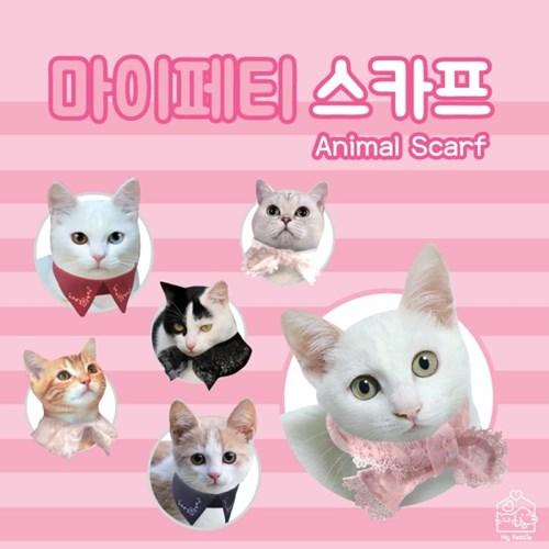마이페티 귀여운 고양이 스카프 2개세트_(1450217)