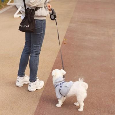 댕댕이 산책가방 데일리백 겸용 (2종 택1)