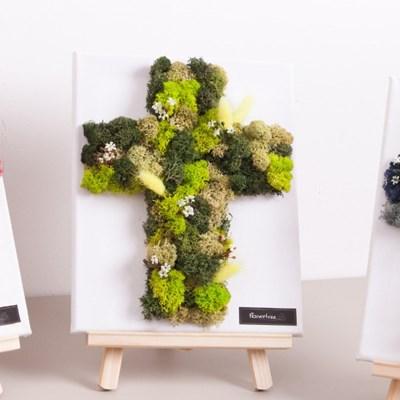 스칸디아 십자가 액자set(이젤+전구)30cmP 공기정화식물
