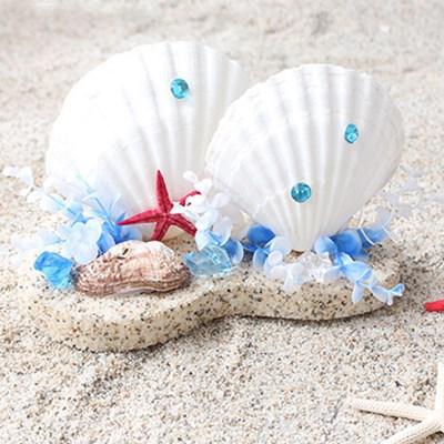 [데코봉봉]여름 가리비 장식
