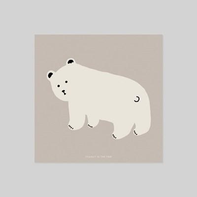 POSTCARD. 북극곰
