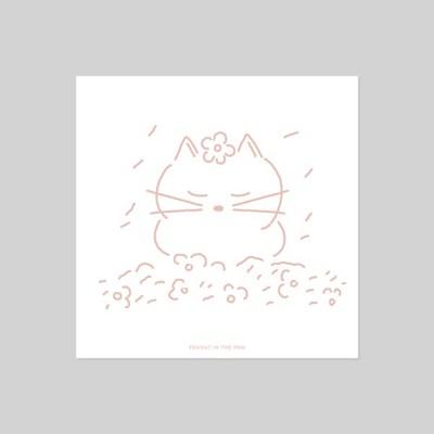 POSTCARD. 벚꽃 고양이
