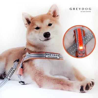 [그레이독] 프리미엄 LED 라이트닝 하네스/리드줄 (USB충전)