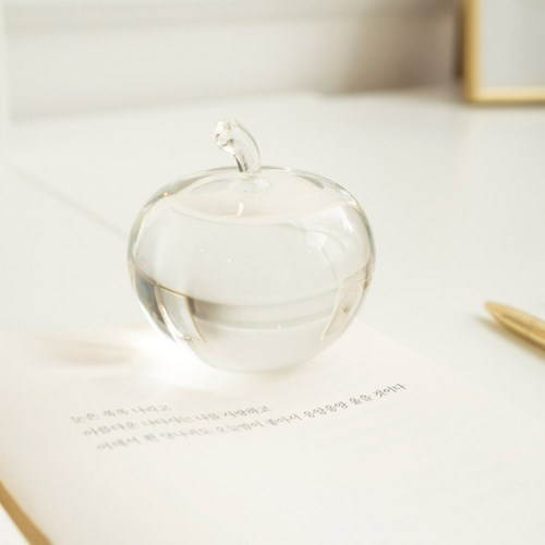 Clear Fruit Paperweight 투명 열매 문진