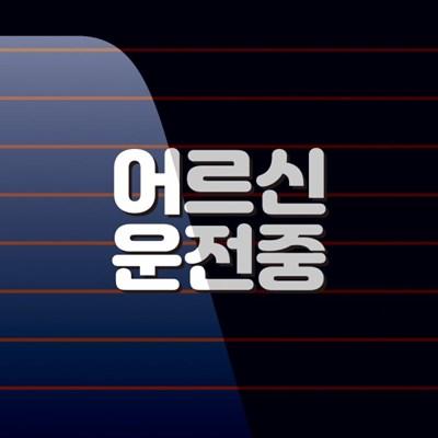 캐찹 자동차스티커 텍스트 어르신운전중_07