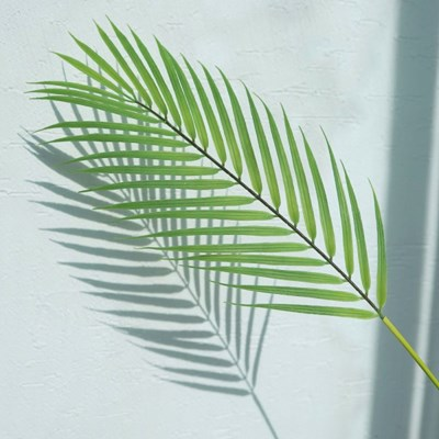아레카야자잎 조화 / 보테니컬 그린인테리어