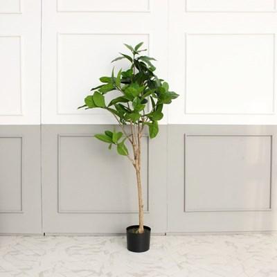 뱅갈 고무 나무 조화 150cm