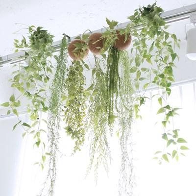 인테리어 행잉 플랜트 조화 / 공중 넝쿨 식물
