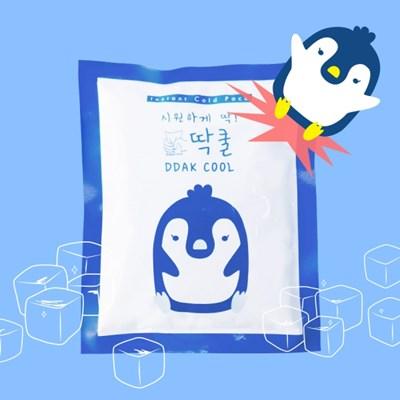 딱쿨 터트리는 아이스 쿨팩 미니 휴대용 아이스팩 5개