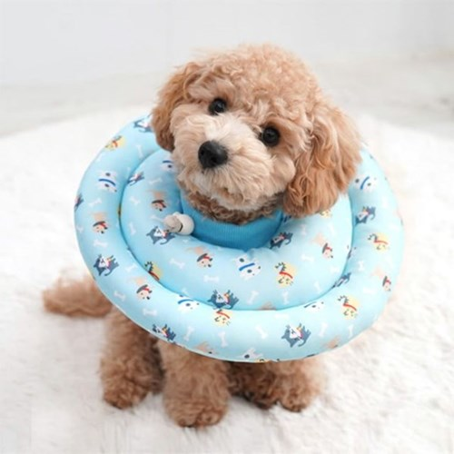반려동물 패턴 원형 카라 블루 도그앤캣 M L 넥카라