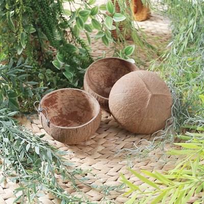 코코넛 바구니 / 행잉 플랜트 화분 걸이