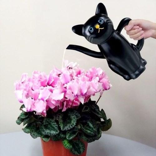 메이호 고양이 물뿌리개/물조리개 (블랙)_(1978870)