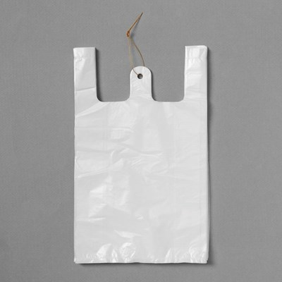 100p 비닐봉투(흰색-5호)