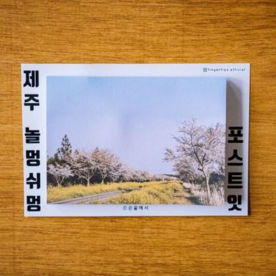 [손끝에서] 제주 놀멍쉬멍 포스트잇_녹산로벚꽃길