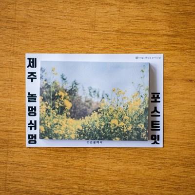 [손끝에서] 제주 놀멍쉬멍 포스트잇_유채동산