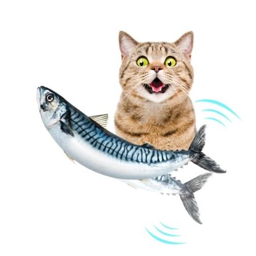 펫케어 춤추는생선 고양이용 고등어