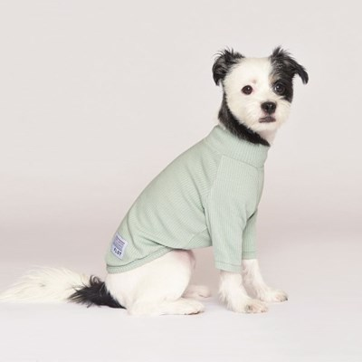 강아지옷 플로트 스탠다드 하프넥티셔츠 민트_(898216)