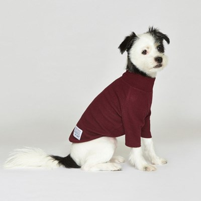 강아지옷 플로트 스탠다드 하프넥티셔츠 버건디_(898212)